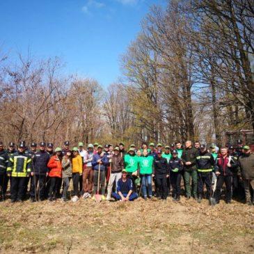 Elevii Liceului Teoretic Odobeşti au plantat arbori la Angheleşti alături de pompieri