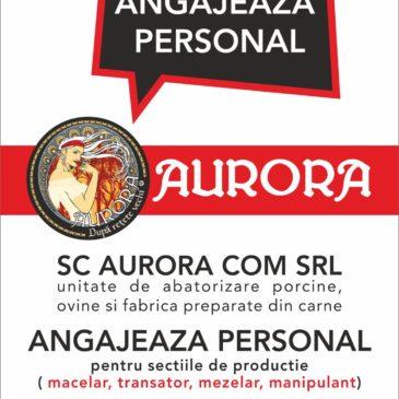 AURORA angajeaza personal
